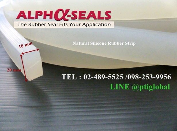 Natural Silicone Rubber Strip 10X20 mm.JPG